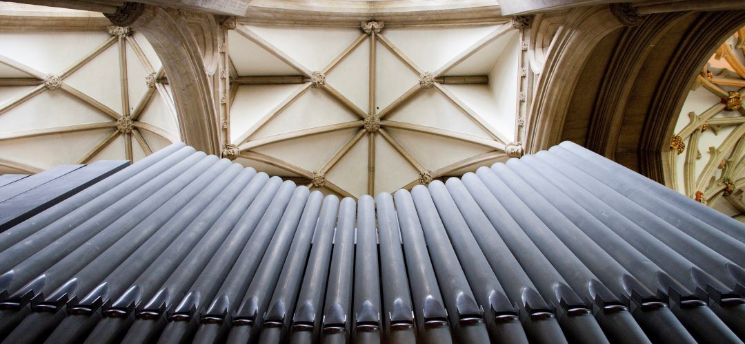 Sound and Silence in the Ecology of the Cathedral